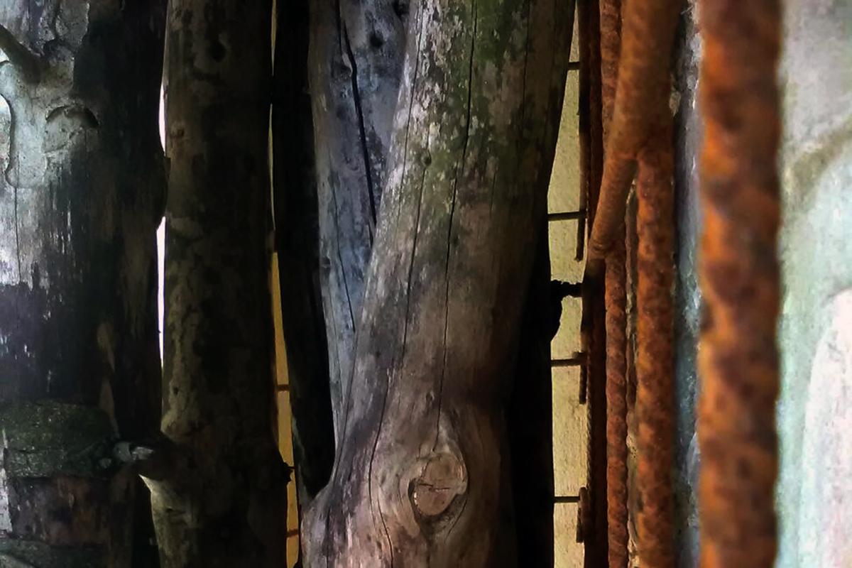 giacomo manenti